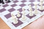 Турнир по шахматам «Белая ладья»